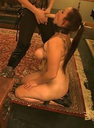 Rossis Tit Training