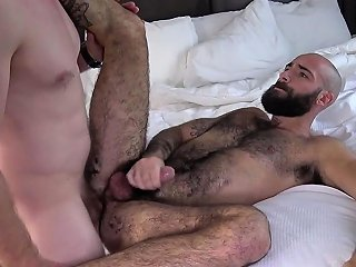 Cocksucking Bear Rides Lovers Dick Bareback