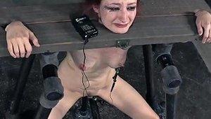 Caned Bdsm Submissive Punished Harshly Porn 29 Xhamster