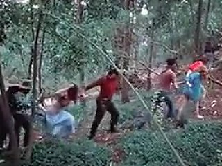 Filthy Forest Tubepornclassic Com