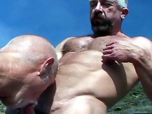 Muscle hairy bear gets his cock sucked outdoors